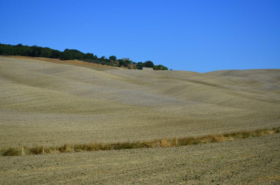 colline toscane vacanze agriturismo